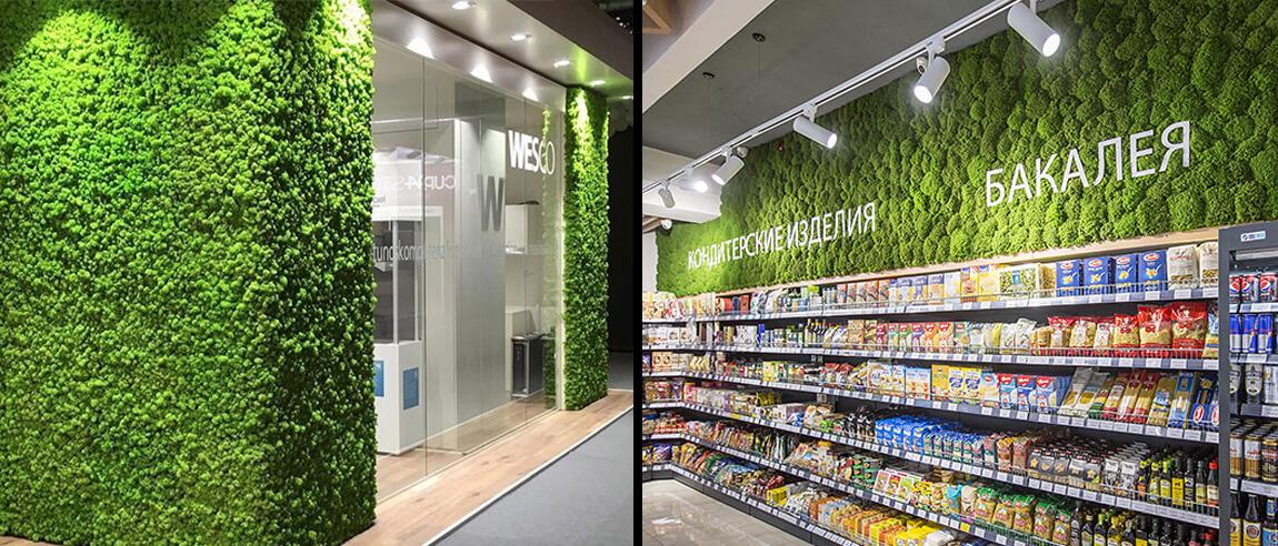Озеленение мхом магазинных витрин